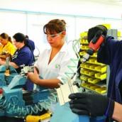 ¿De dónde salieron los 552.000 nuevos empleos que reportó el Dane en junio?