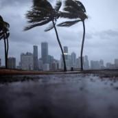 La Florida, en vela por una catástrofe descomunal.
