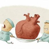Trasplantes aumentan, pero siguen mitos al donar.