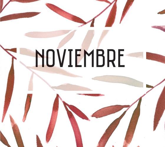 USDIDEA NOTICIAS-NOVIEMBRE DE 2018