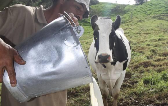 Cuentas del sector lácteo no cuadran ni convencen