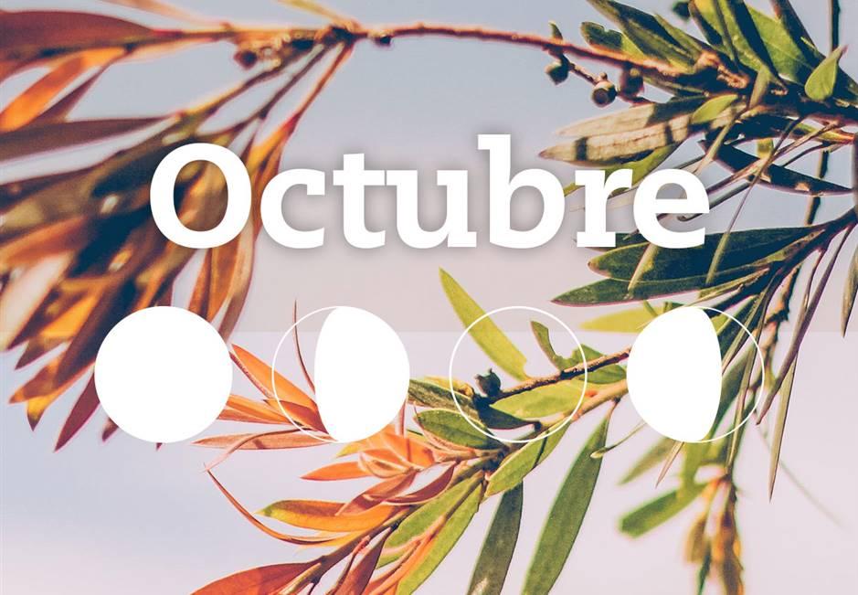 POLO NOTICIAS DE ANTIOQUIA-OCTUBRE DE 2018